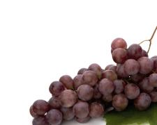 EVR  Extracto de Vinha Vermelha